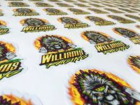 Williams Racing Decals